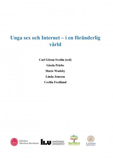 Unga sex och internet